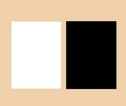 白と黒と肌色