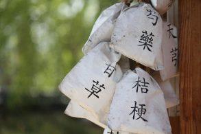 漢方用の薬草