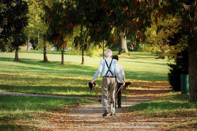 秋の公園を散歩する夫婦