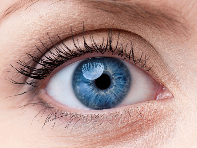 青く澄んだ目