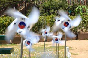 韓国の風車
