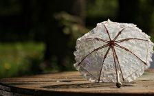 白いフリルの日傘